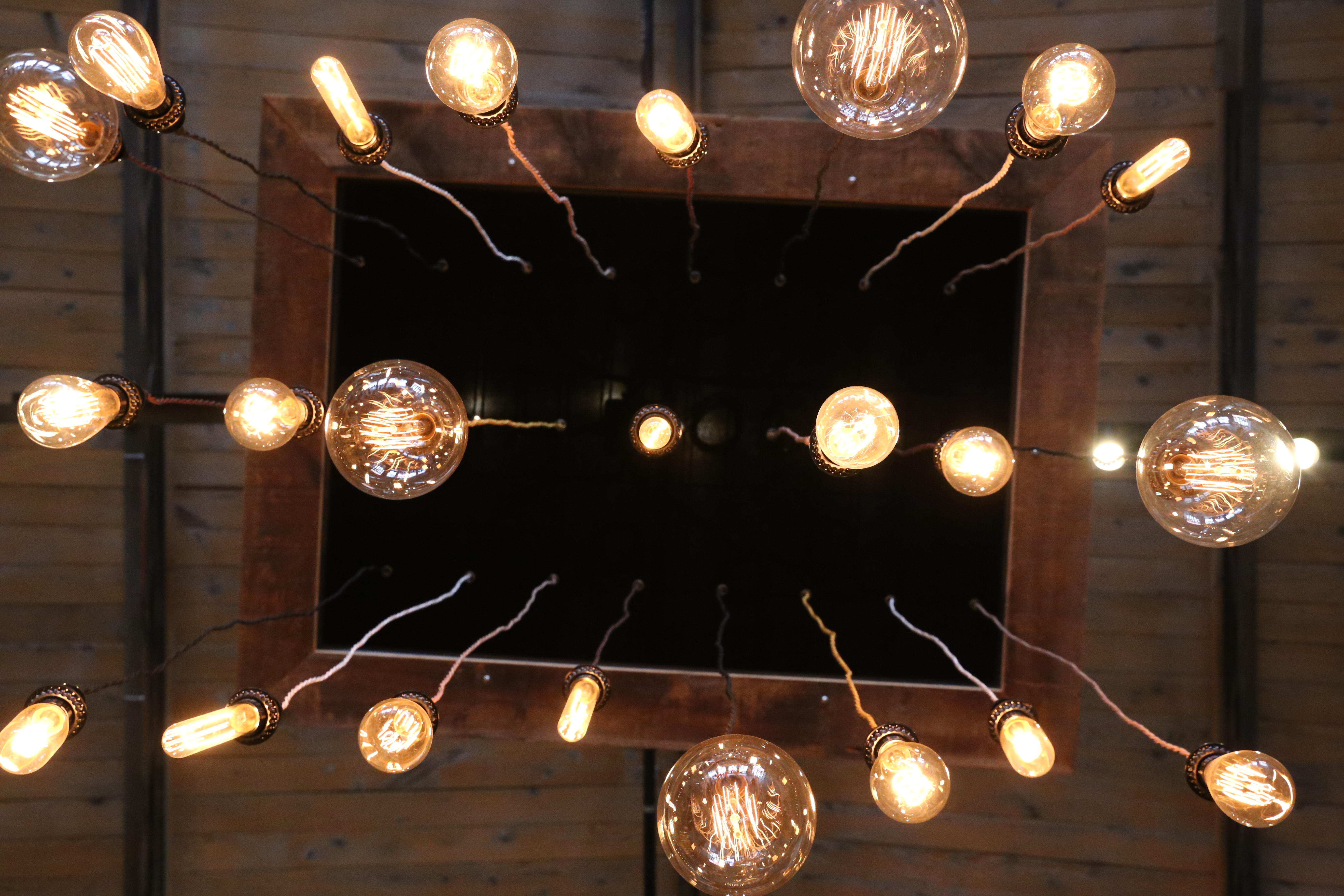 Custom Pendant Fixture with various size bulbs